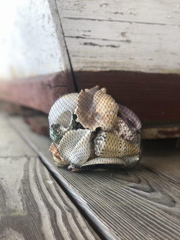 Large Shell Bag