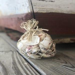 Small Shell Bag
