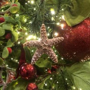 Glitter Starfish 2