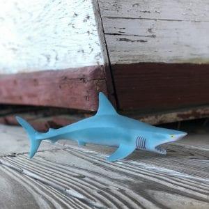 Squeaky Shark 1